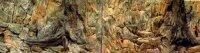 Aquarium Rückwand 3d 50x30 bis 200x60cm Terrarien Fels Wurzel Struckturwand Neu