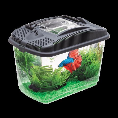 Aquael Betta Kit Aquarium für Kampffische